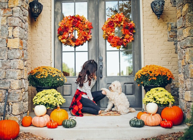 the sweetest thing blog, emily gemma, pinterest fall fashion 2016, pinterest front porch decor fall, fall decorations mums and pumpkins, minigoldendoodle, pinterest fall outfits 2016-2
